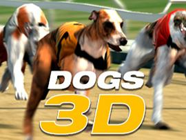 Dogs 3D