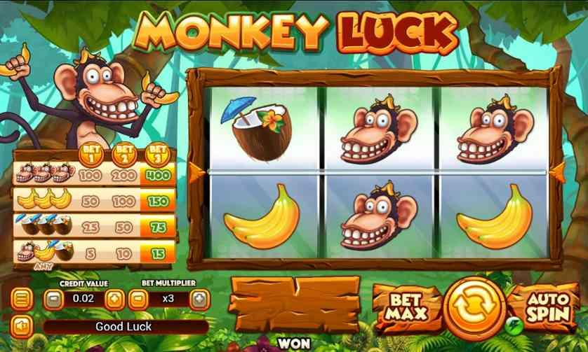 Monkey Luck.jpg