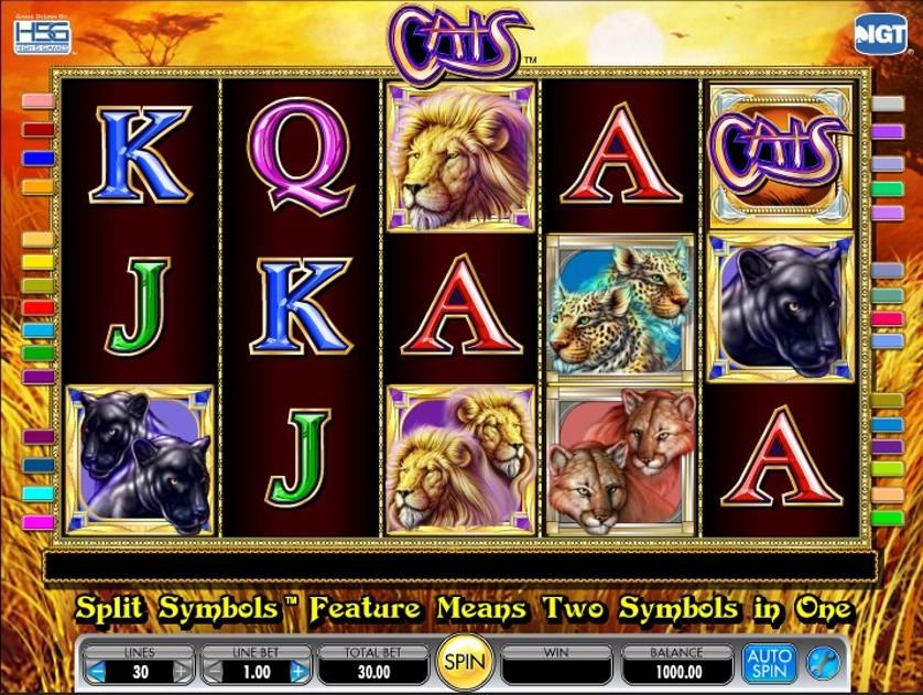 CatsCats Free Slots.jpg