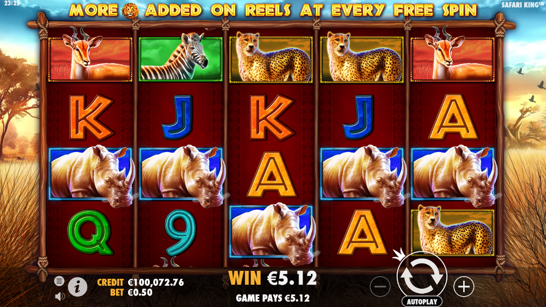 Safari King slot 5 of a kind win