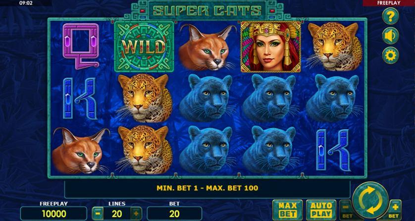 Super Cats.jpg