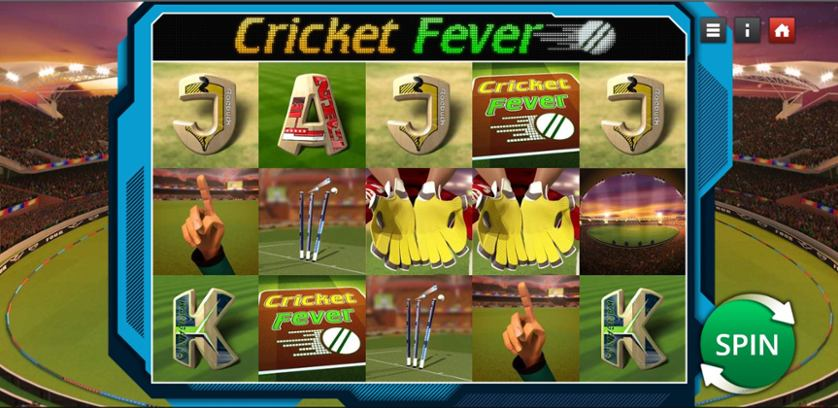 Cricket Fever.jpg