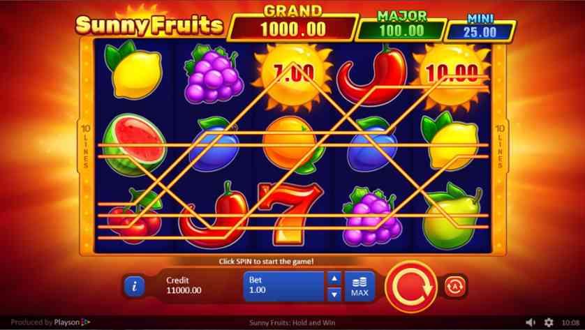 Sunny Fruits.jpg