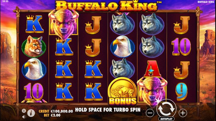 Buffalo King.jpg