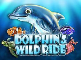 Dolphin's Wild Ride