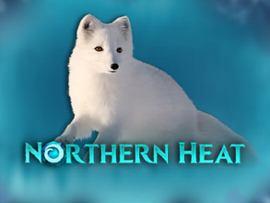 Nothern Heat