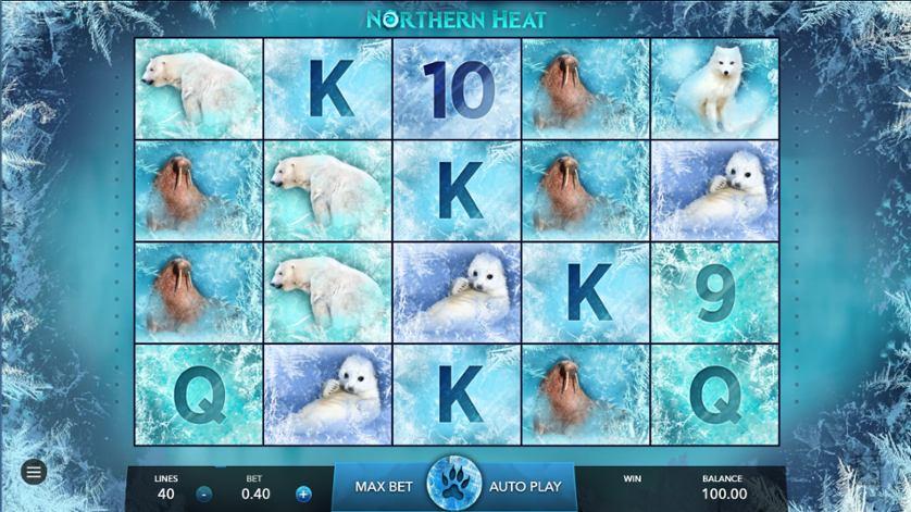 Nothern Heat.jpg