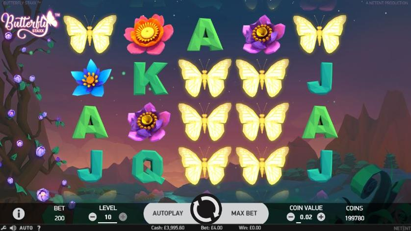 butterfly-screens.JPG