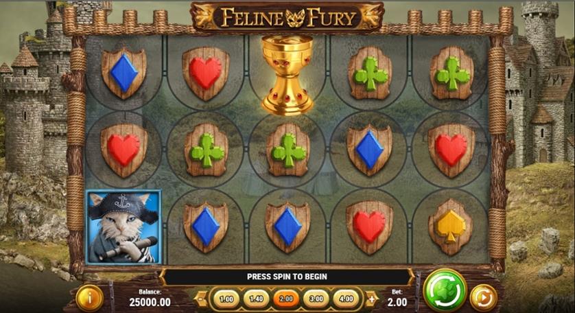 Feline Fury.jpg