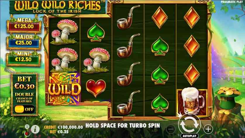 Wild Wild Riches.jpg