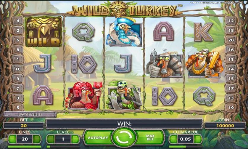 wild-turkey-screen.JPG