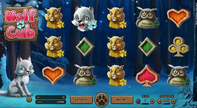 wolf-cub-screen.JPG