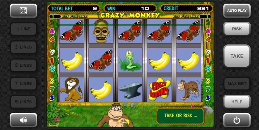 Crazy Monkey.jpg
