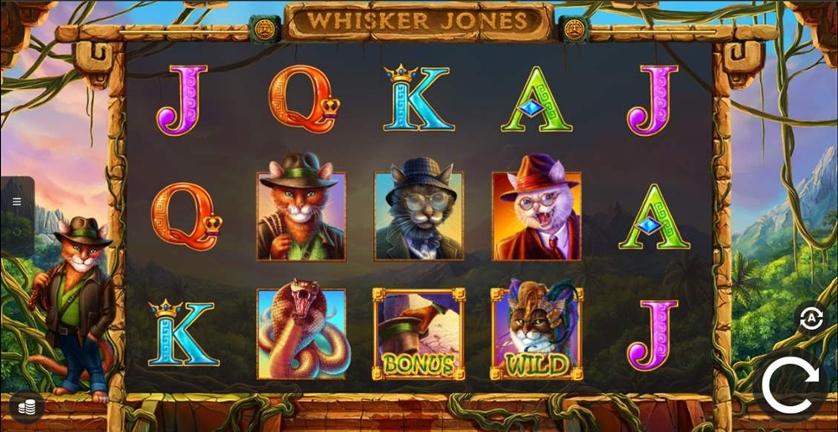 Whisker Jones.jpg
