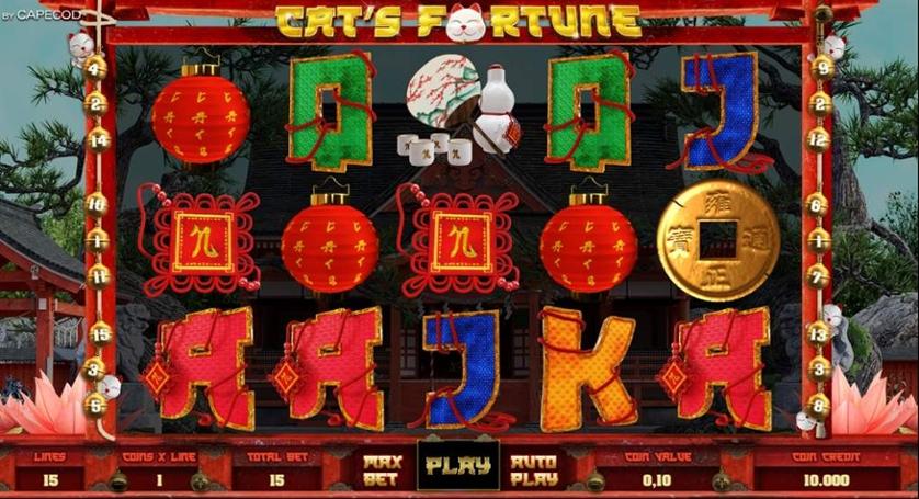 Cat's Fortune.jpg