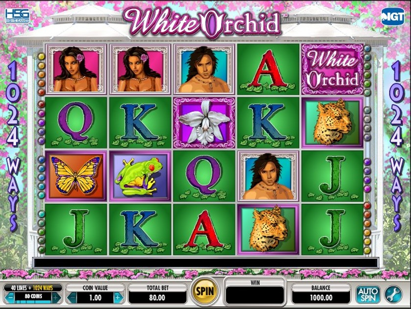 White Orchid Free Slots.jpg
