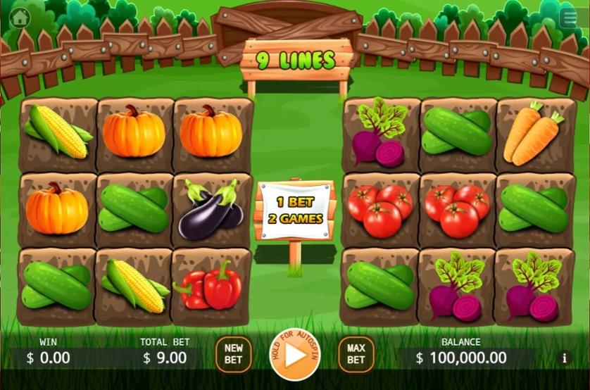 Veggies Plot.jpg