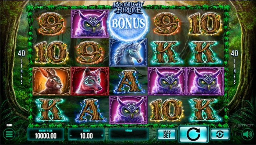 Moonlight Fortune Free Slots.jpg