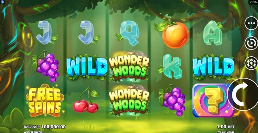 Wonder Woods.jpg