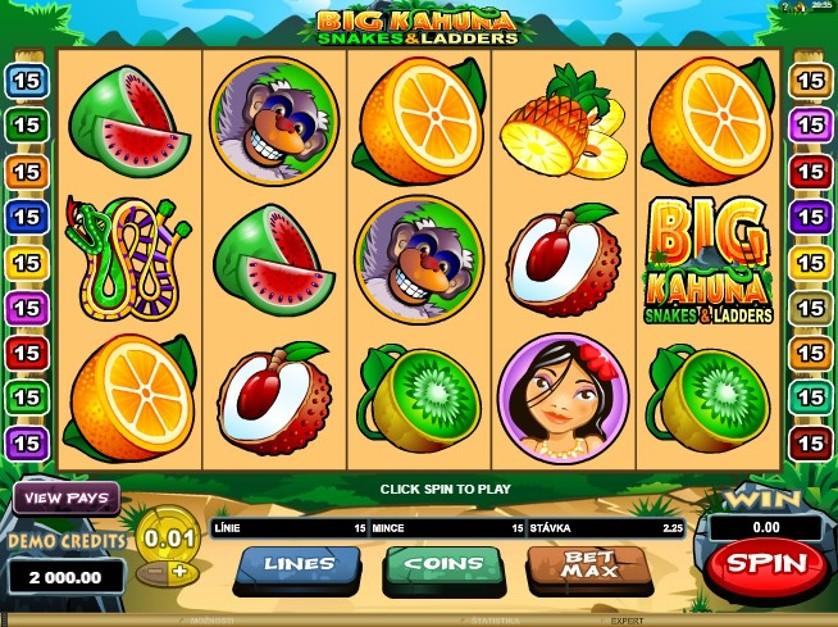 Big Kahuna Snakes & Ladders Free Slots.jpg