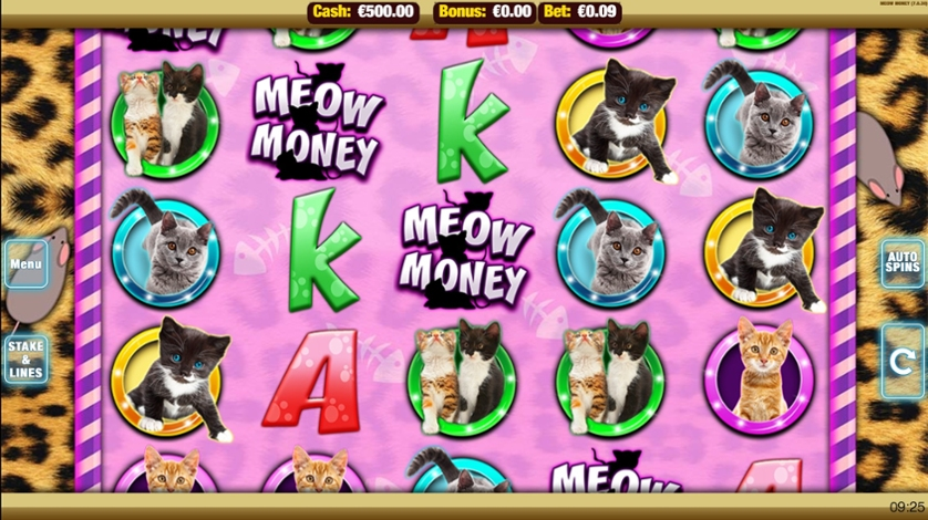 Meow Money.jpg