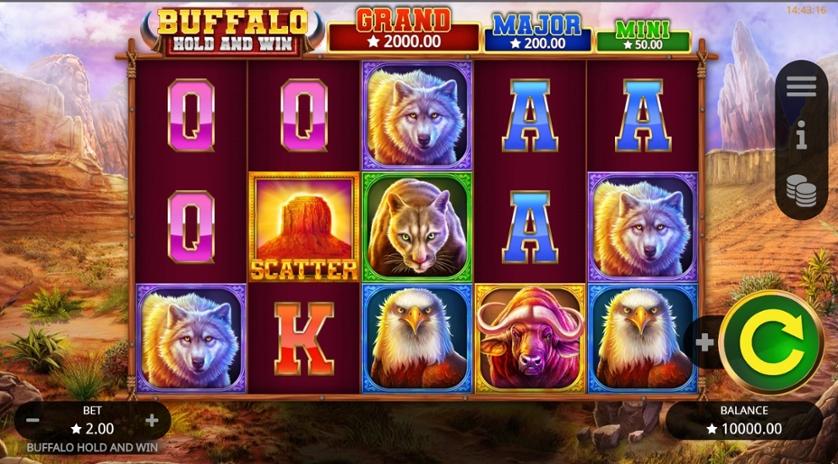 Buffalo Hold and Win.jpg