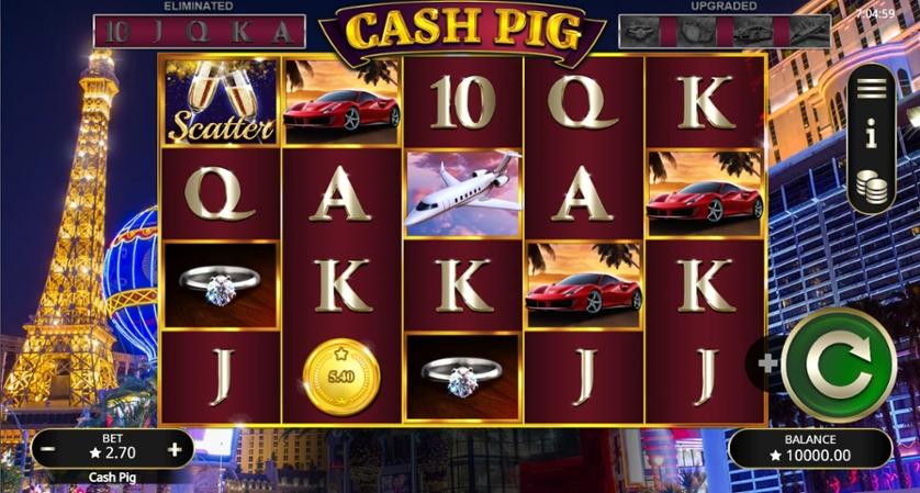 Cash Pig.jpg