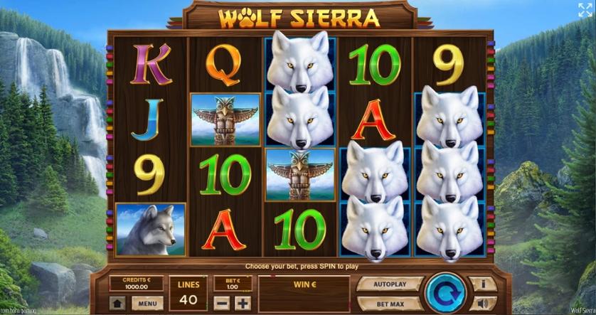 Wolf Sierra.jpg