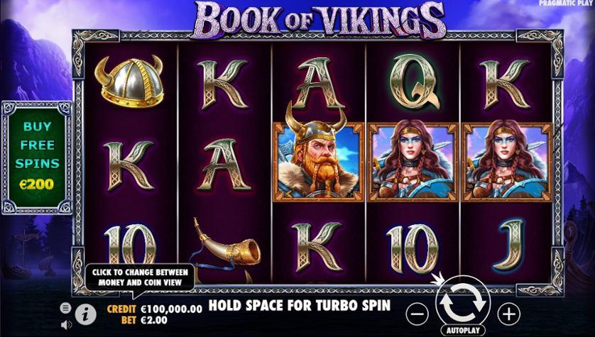 Book of Vikings.jpg