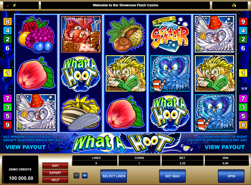 What a Hoot Free Slots.png