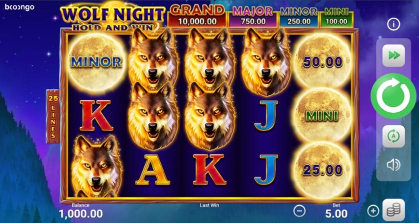 Wolf Night.jpg