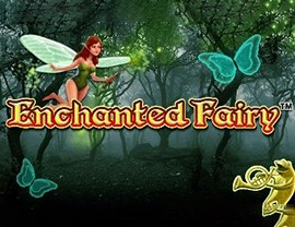 Enchanted Fairy