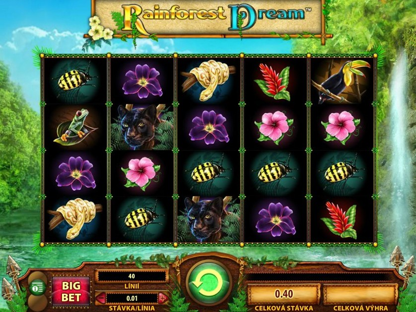 Rainforest Dream Free Slots.jpg