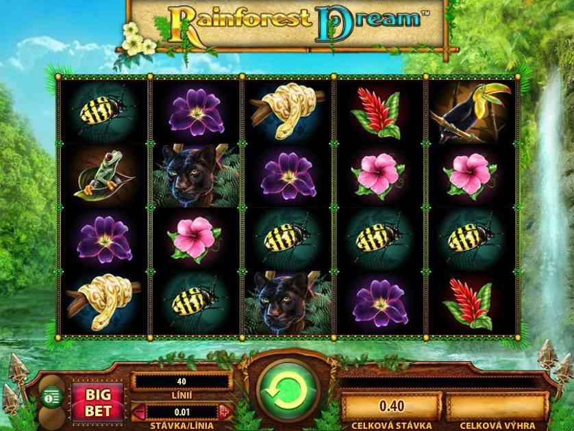Rainforest Dream Free Slots.jpg