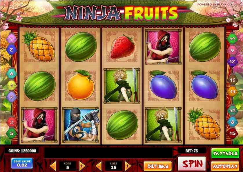 Ninja Fruits Free Slots.jpg