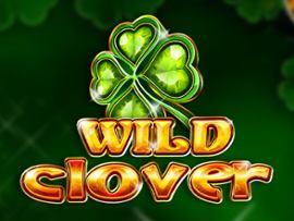 Wild Clover
