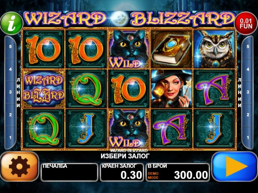 Wizard Blizzard Free Slots.jpg