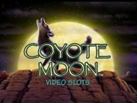 Луна Койота
