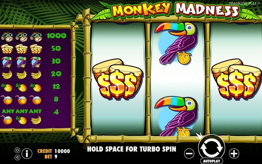 Monkey Madness.jpg