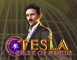 Tesla Spark of Genious