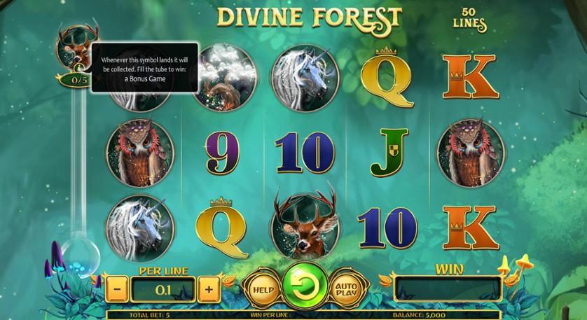 Divine Forest.jpg