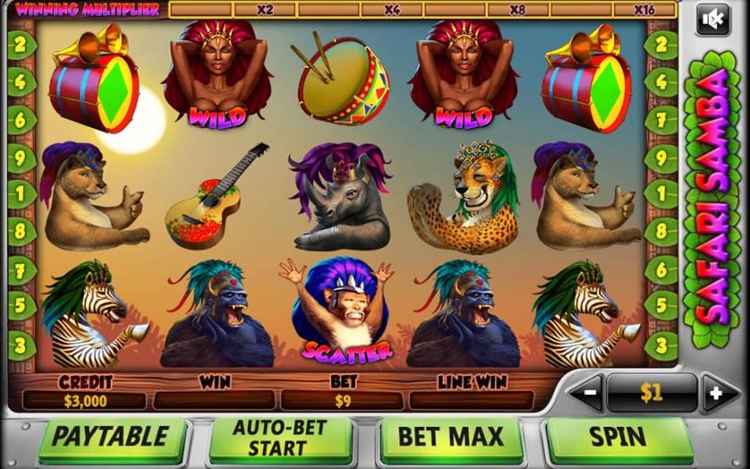 Safari Samba.jpg