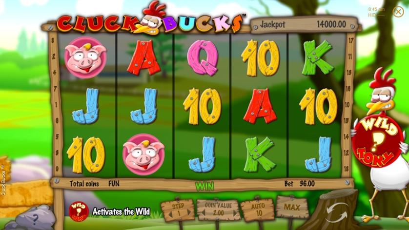 Cluck Bucks.jpg