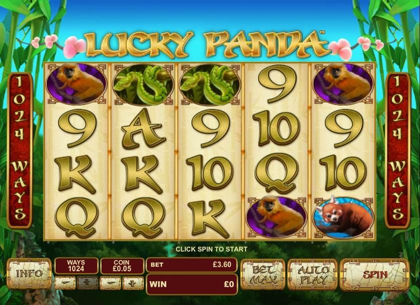 Lucky Panda.jpg