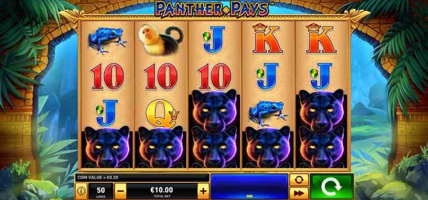 Panther Pays.jpg