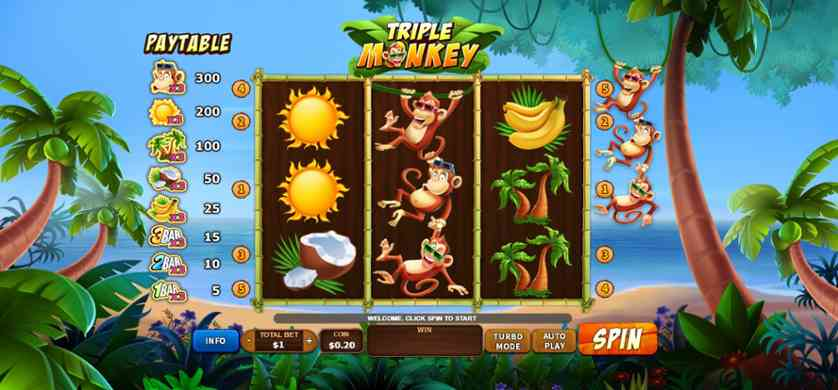 Triple Monkey.jpg