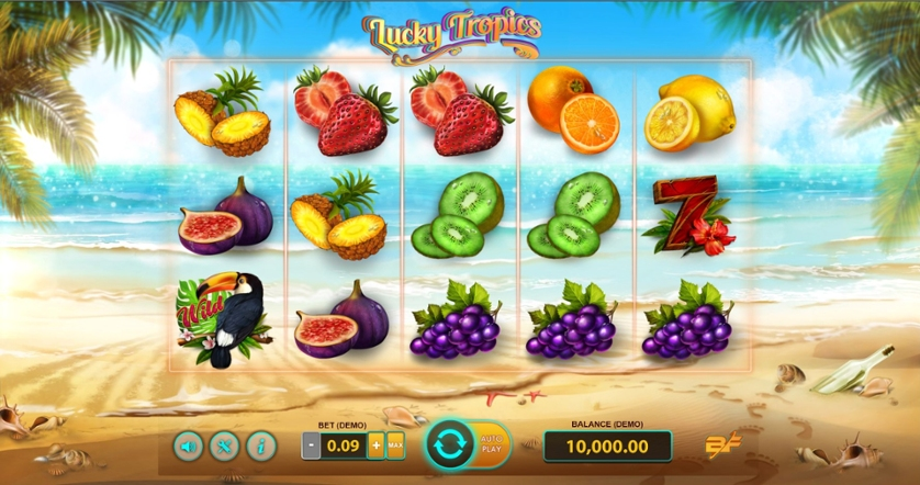 Lucky Tropics.jpg