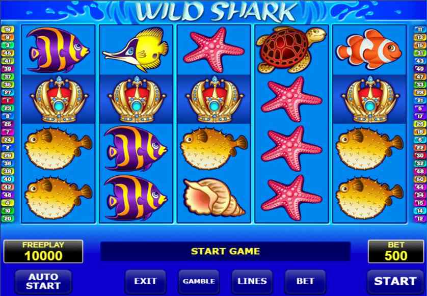 Spielen Sie Wild Shark kostenlos im Demo Mode von Amatic