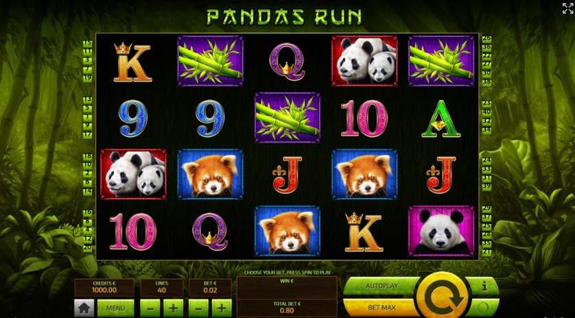 Panda's Run.jpg