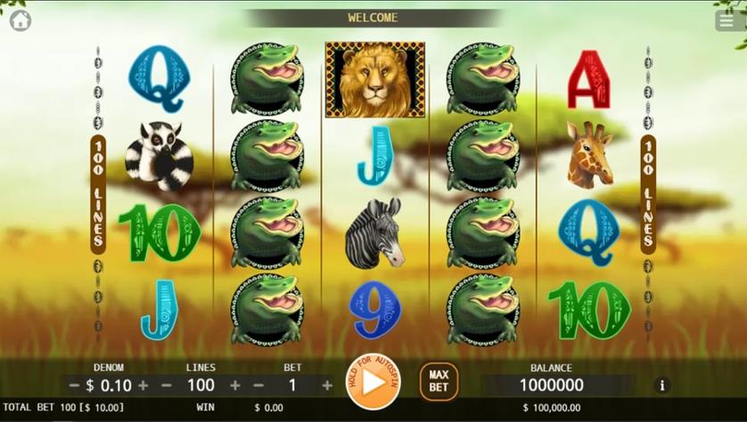 Safari Slots.jpg